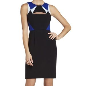 BCBG stunning  color block dress with slits size 2